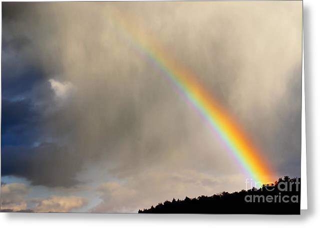 Aimelle Photography Greeting Cards - There is Always Hope - 02 Greeting Card by Aimelle