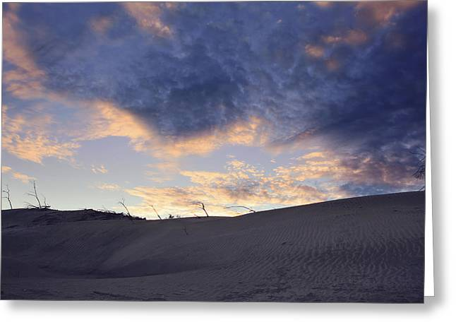 Desert Greeting Cards - There Is Love Greeting Card by Laurie Search