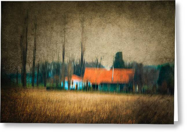Cornfield Photographs Greeting Cards - Theres a house on the edge of a cornfield Greeting Card by Constance Fein Harding