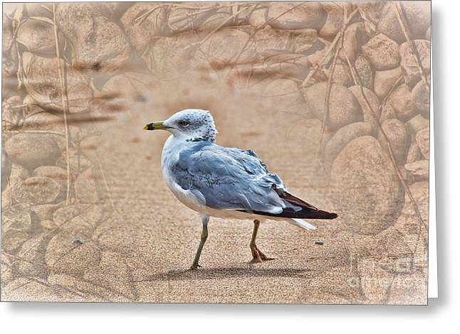 Never Alone Greeting Cards - They Will Not Hurt Me Greeting Card by Cathy  Beharriell