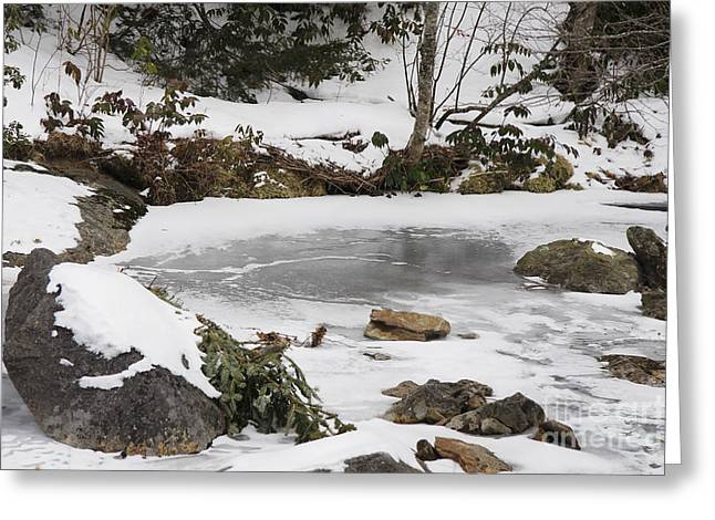 Jonathan Welch Greeting Cards - Thin ice Greeting Card by Jonathan Welch