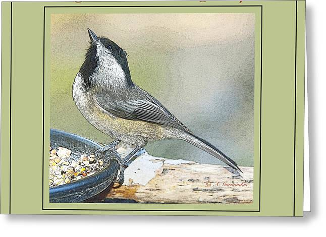 Positive Attitude Greeting Cards - Things are Looking Up Chickadee Print Greeting Card by A Gurmankin