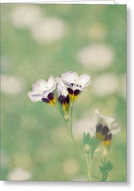 Textured Floral Greeting Cards - Things We Love Greeting Card by Kim Hojnacki