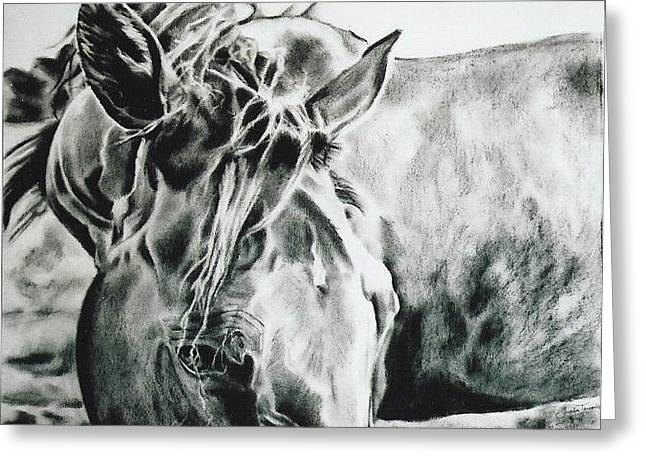 Forelock Drawings Greeting Cards - Things were Sweeter in Tennessee Greeting Card by Shaila Yovan Tenorio