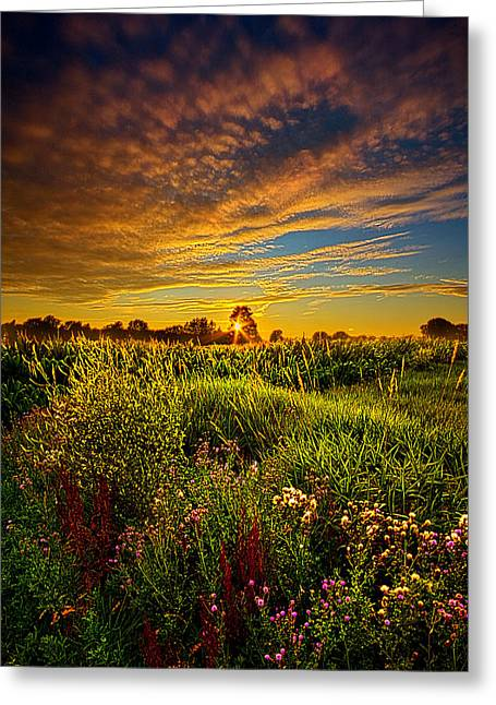 Farming Greeting Cards - Think I Will Sit a Spell Greeting Card by Phil Koch