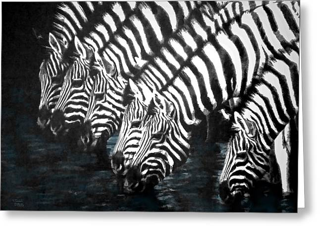 Pen Greeting Cards - Thirsty Zebras  Greeting Card by Sandi OReilly
