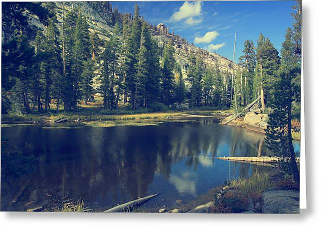 Yosemite Greeting Cards - This Beautiful Solitude Greeting Card by Laurie Search