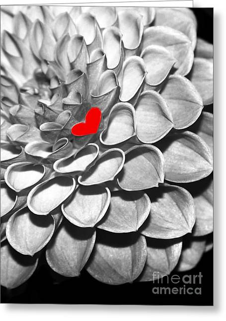 Florida Flowers Greeting Cards - This Heart is for You Greeting Card by Sabrina L Ryan