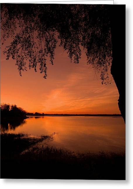 Sonne Greeting Cards - This is a New Day ... Greeting Card by Juergen Weiss