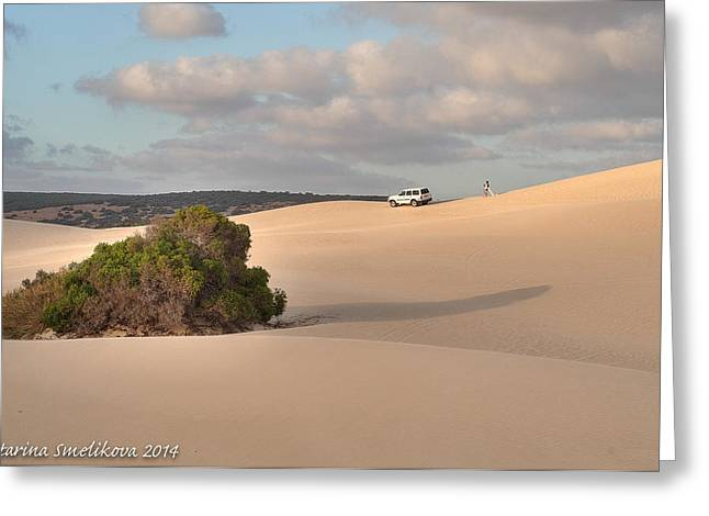 Sand Dunes Pyrography Greeting Cards - This is Australia Greeting Card by Katarina Smelikova