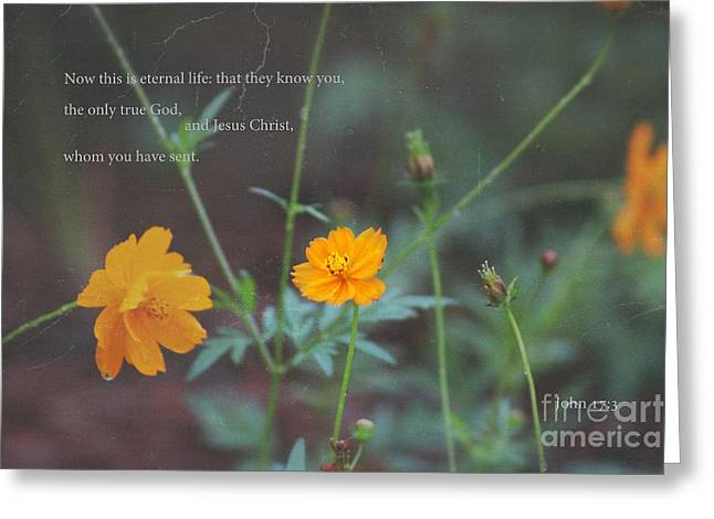 Eternal Inspirational Greeting Cards - This Is Eternal Life Greeting Card by Ella Kaye Dickey