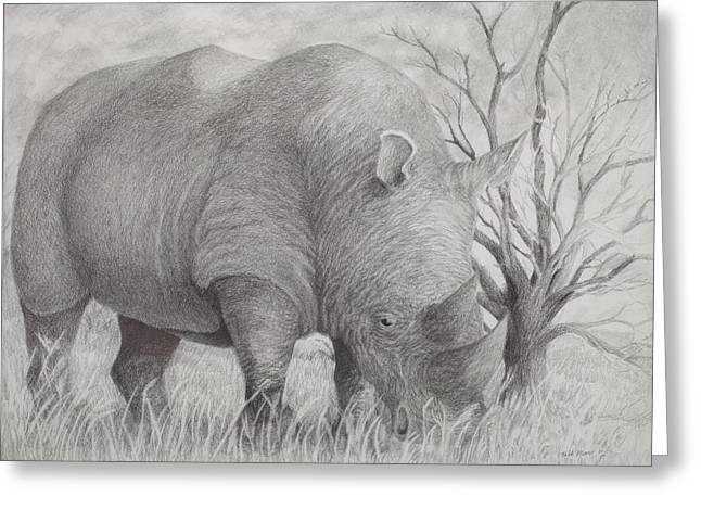 Rhinoceros Drawings Greeting Cards - This is Gonna Hurt Greeting Card by Rick Moore