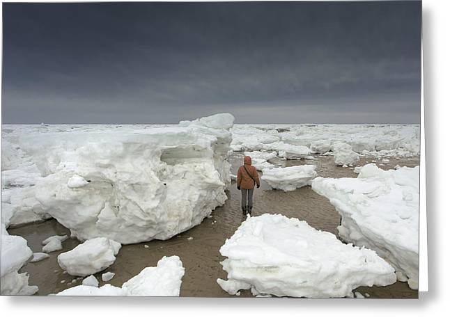 Massachusetts Artist Greeting Cards - This Is How Thick Ice In Wellfleet Cape Cod Greeting Card by Dapixara