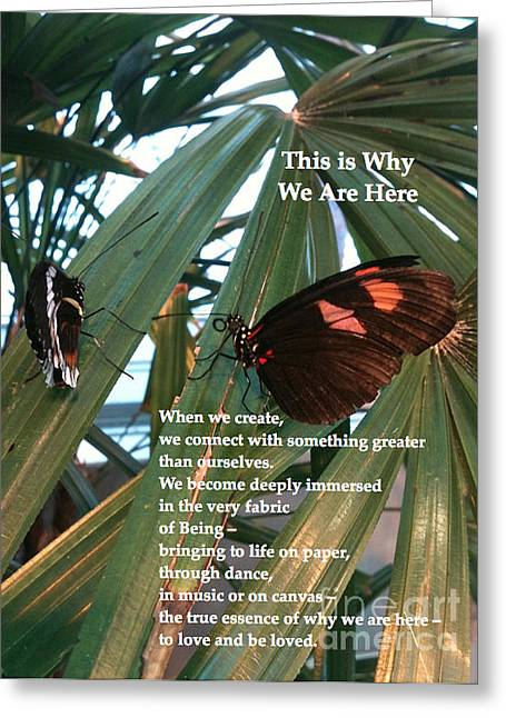 Why We Are Here Greeting Cards - This is Why We Are Here Greeting Card by Cristina Norcross