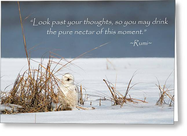 Rumi Greeting Cards - This Moment Greeting Card by Bill  Wakeley
