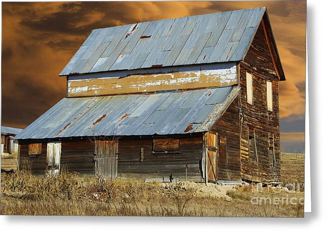 Tin Roof Greeting Cards - This Old Barn Greeting Card by Steven Parker