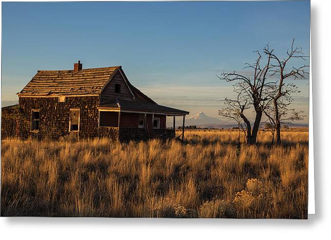 Abandoned House Greeting Cards - This Old House Greeting Card by Angie Vogel