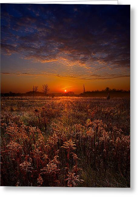 Geographic Greeting Cards - This Time Around Greeting Card by Phil Koch