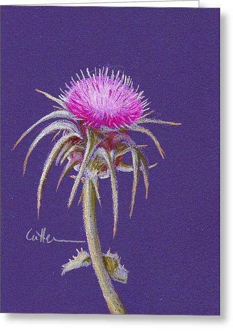 Thistle Greeting Card by Diane Cutter