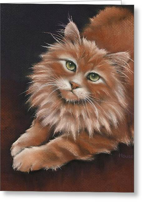 Print On Canvas Greeting Cards - Thomas Greeting Card by Cynthia House