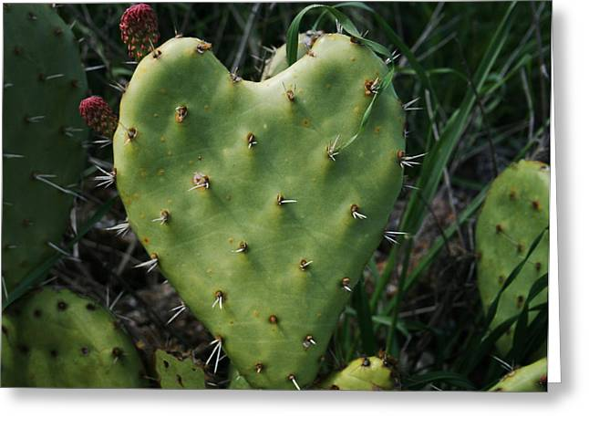 Thorny Greeting Cards - Thorny Heart Greeting Card by Ellen Henneke
