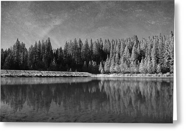 Black And White Landscape Greeting Cards - Those Days Are Gone Greeting Card by Laurie Search