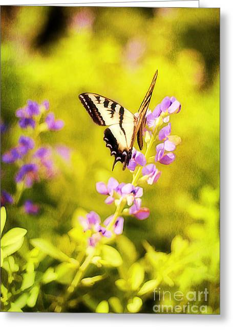 Tiger Dream Greeting Cards - Those Summer Dreams Greeting Card by Darren Fisher