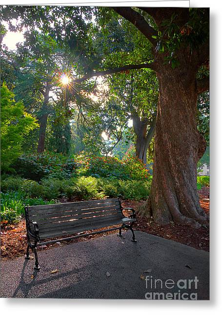 Park Benches Greeting Cards - Thoughts For A New Day Greeting Card by Michael Eingle