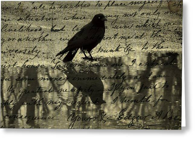 Corvus Greeting Cards - Thoughts Of Poe Greeting Card by Gothicolors Donna Snyder
