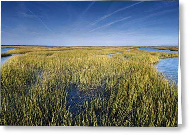 Tidal Photographs Greeting Cards - Thousand Islands Hamlin Creek SC Greeting Card by JB Boyd