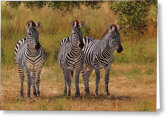 Three Amigos Greeting Card by David Stribbling