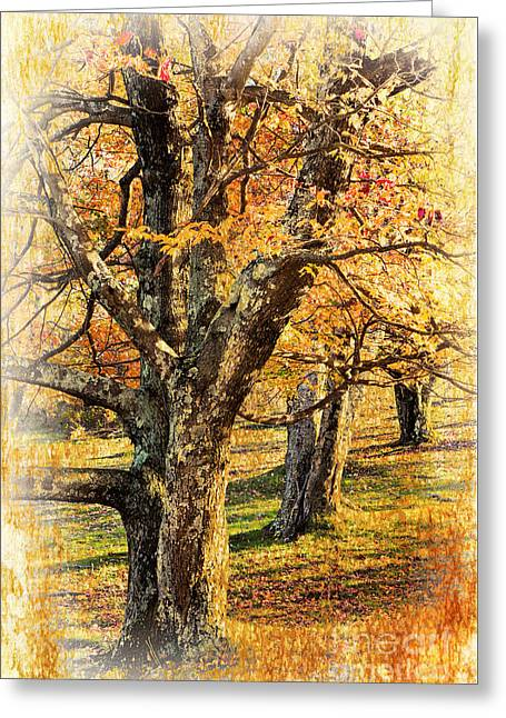 Fall Photos Paintings Greeting Cards - Three Amigos II Greeting Card by Dan Carmichael