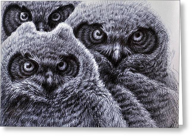 Snowy Night Drawings Greeting Cards - Three Amigos Greeting Card by Rick Hansen