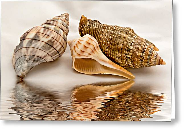Ocean. Reflection Digital Art Greeting Cards - Three Amigos Greeting Card by Steve Harrington