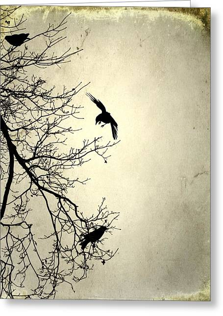 Avian Art Greeting Cards - Three And A Tree  Greeting Card by Gothicolors Donna Snyder
