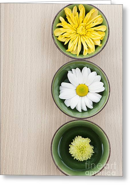 Wooden Bowl Greeting Cards - Three Greeting Card by Anne Gilbert