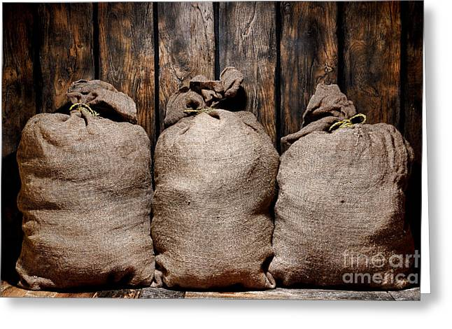 Sac Greeting Cards - Three Bags in a Warehouse Greeting Card by Olivier Le Queinec