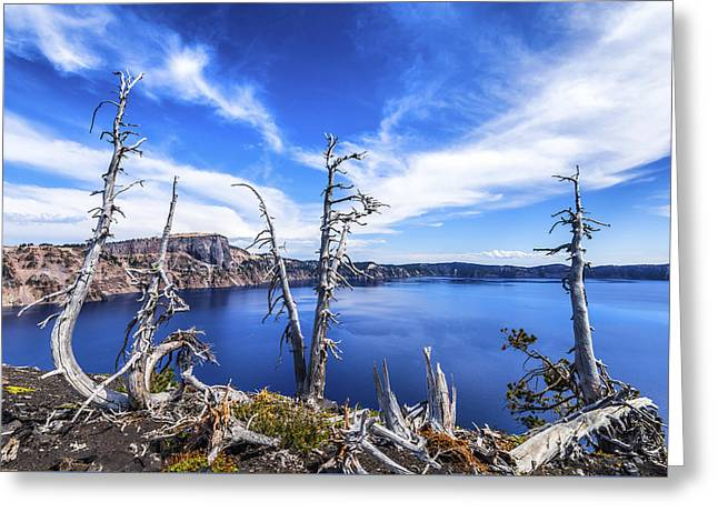 Crater Lake View Greeting Cards - Three Bare Pines Greeting Card by Joseph S Giacalone