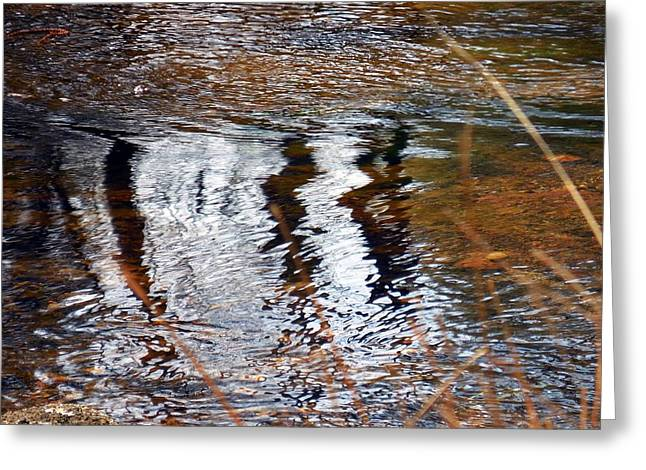 Trees Reflecting In Creek Greeting Cards - Three Bars Greeting Card by Chris Gudger