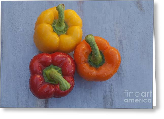 Home Grown Greeting Cards - Three bell peppers Greeting Card by Vishwanath Bhat
