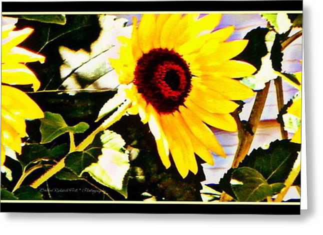 Yellow Sunflower Greeting Cards - Three Cheerful Sunflowers Greeting Card by Bobbee Rickard