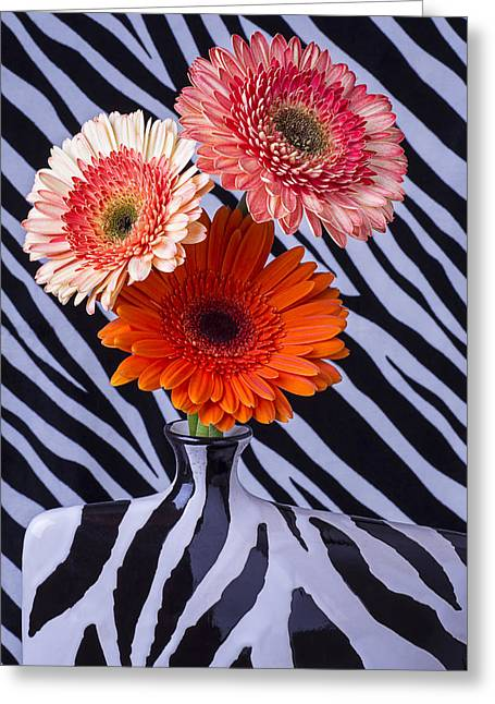 Beautiful Zebra Greeting Cards - Three Daises In Striped Vase Greeting Card by Garry Gay