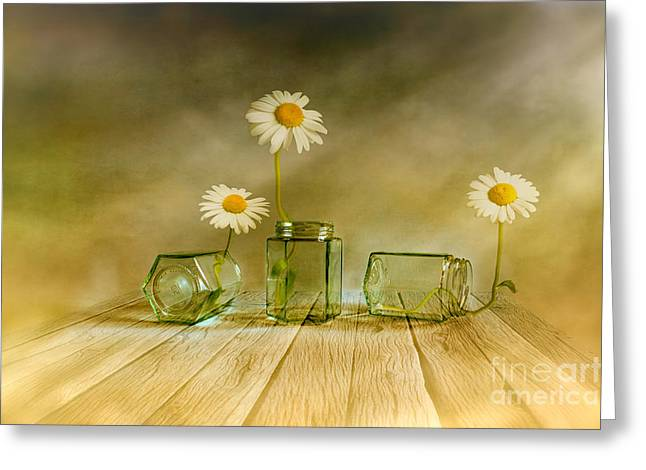Multicolored Digital Greeting Cards - Three daisies Greeting Card by Veikko Suikkanen