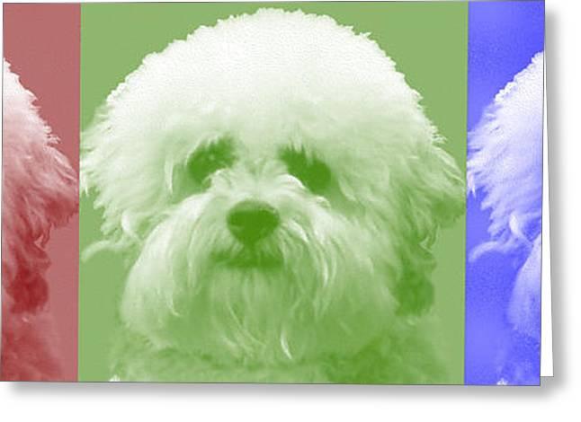 Dogs Digital Art Greeting Cards - Three Dog Faces R. G. B. Greeting Card by Doris Rowe