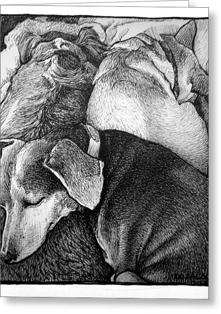 Puppies Drawings Greeting Cards - Three Dog Night Greeting Card by Lorraine Zaloom
