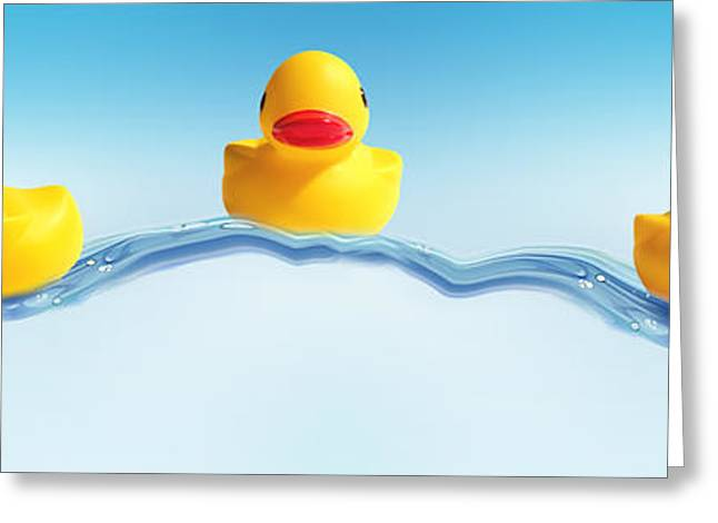 Rubber Duck Greeting Cards - Three Ducks On Water Greeting Card by Panoramic Images