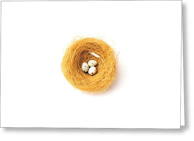 Square-cut Greeting Cards - Three Eggs In Nest Illustrated On White Greeting Card by Panoramic Images