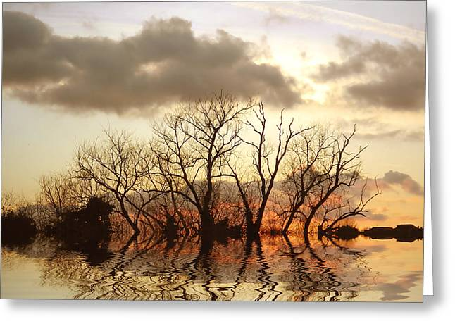 Reflecting Water Digital Art Greeting Cards - Three Elements Greeting Card by Sharon Lisa Clarke