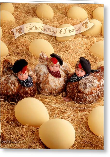 12 Days Of Christmas Greeting Cards - Three French Hens Greeting Card by Anne Geddes