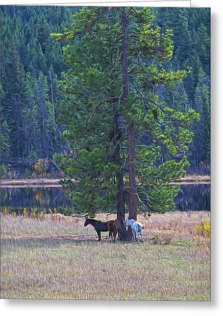 Autumn Scenes Mixed Media Greeting Cards - Three Horses Under a Pine Tree digital oil painting Greeting Card by Sharon  Talson